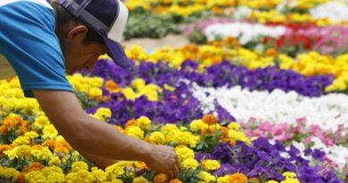 Se fortalecen los lazos comerciales de Colombia y EEUU.