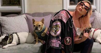 Roban dos mascotas de Lady Gaga