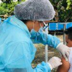 Vacunación dulce en Cundinamarca